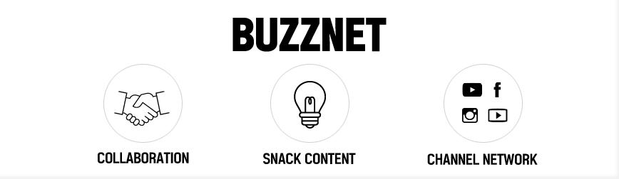 Buzznet2